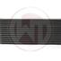 thumb_Wagner_Intercooler_Nxx_F20F30_v2.png